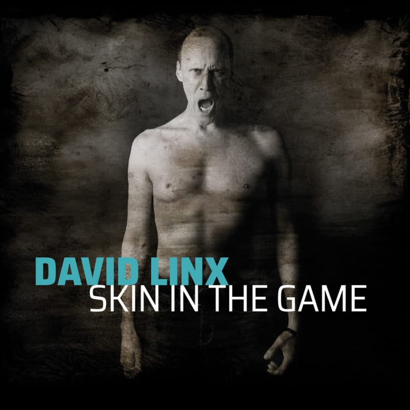 David Linx - Skin In The Game